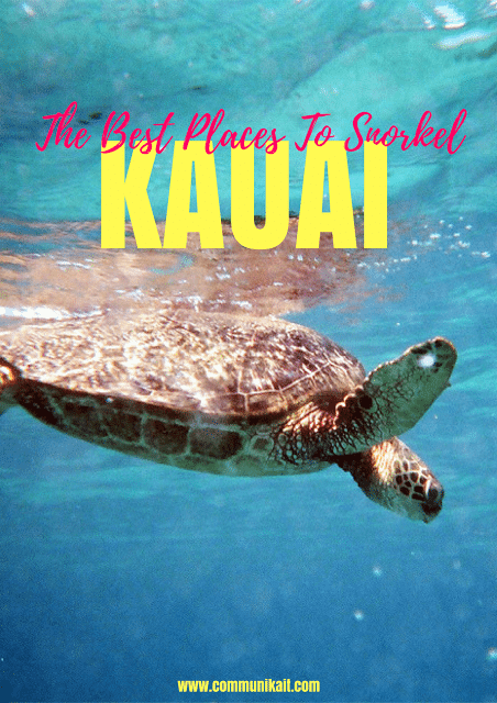 The Best Place To Snorkel On Kauai